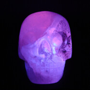 Join Samuel and Max the Crystal Skull
